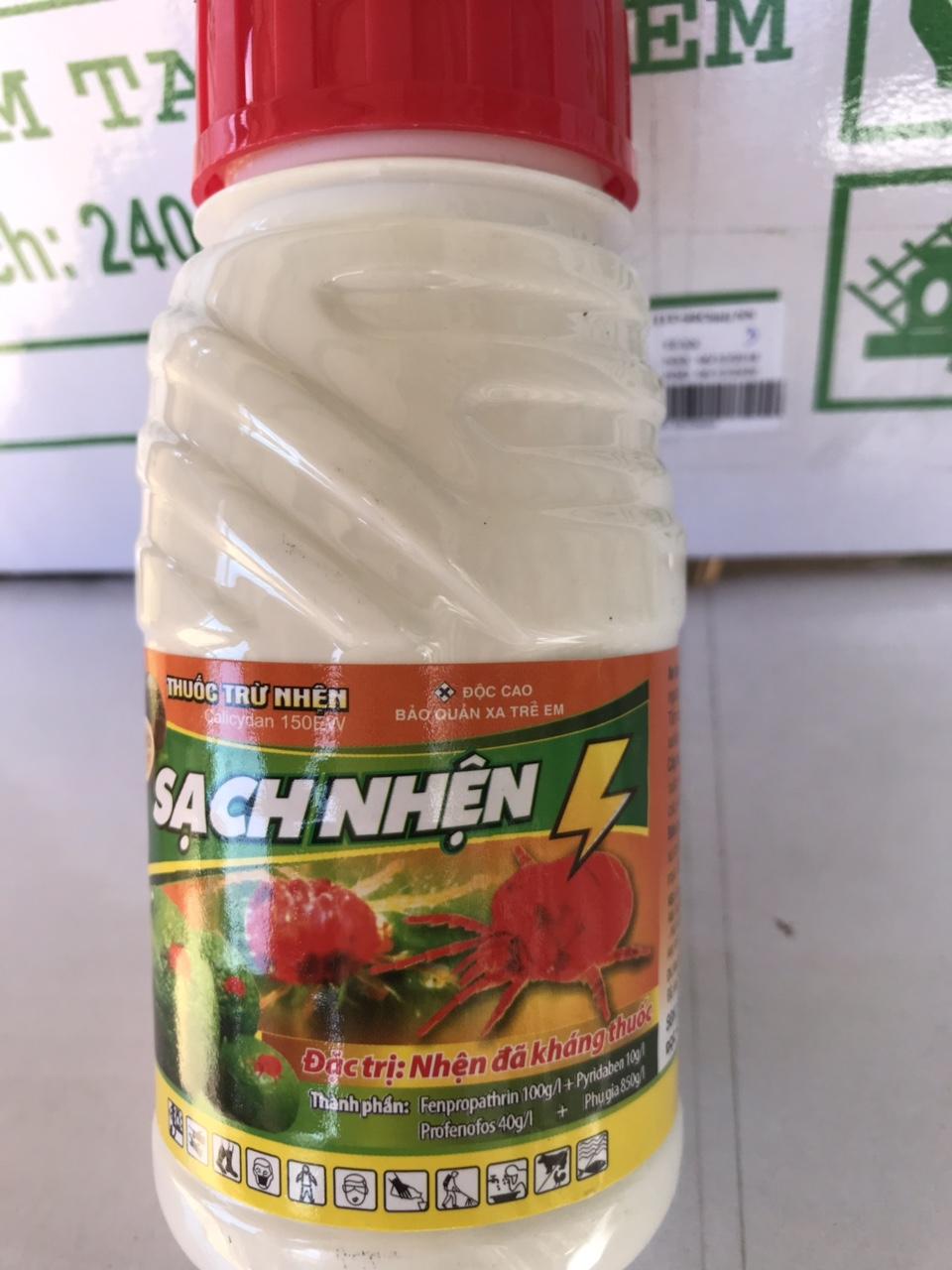 Kỹ thuật trồng và chăm sóc bơ