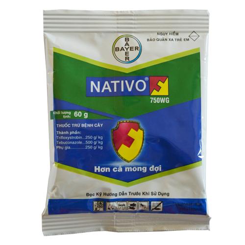 Nativo 750WG